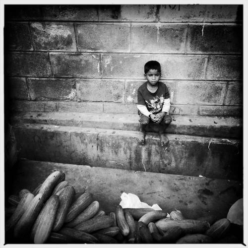 jan-sibik-indie-kalkata-2015-2