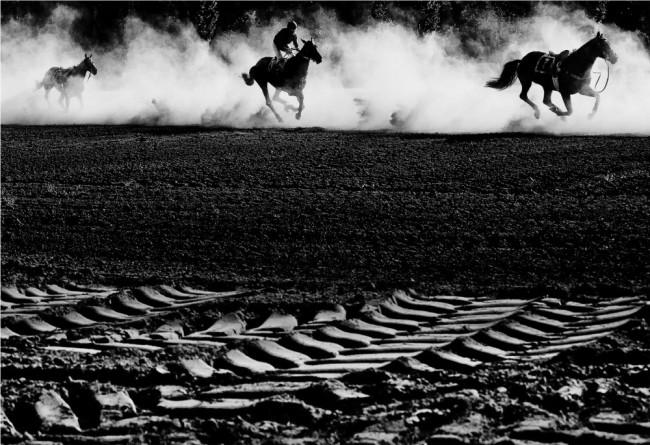 roman-vondrous-steeplechase-cross-country